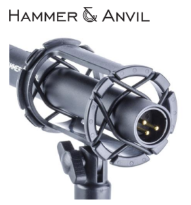 HAAMKENG600-2 XLR Output